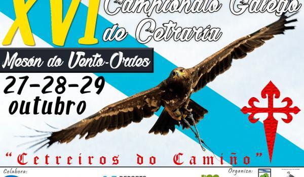 XVI Campionato galego de cetrería